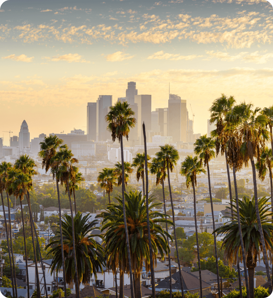 Los Angeles skyline with palm trees